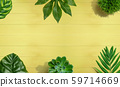 Tropical green leaves from above 59714669