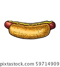 Hotdog with mustard. Side view. Vector engraving 59714909