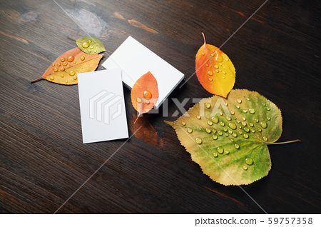 Business cards, autumn leaves 59757358
