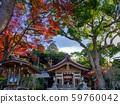 Kamonmon Shrine Autumn leaves 59760042