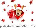 christmas santa claus dog 59760717