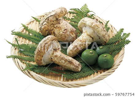 Imported Matsutake 08 (with pass) 59767754