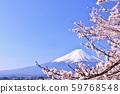 일본의 봄 후지산과 벚꽃 59768548