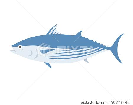 鰹魚圖 59773440