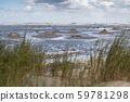 Beach of the frisian island of Terschelling . 59781298