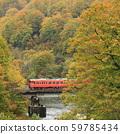 สาย Tadami ของใบไม้ในฤดูใบไม้ร่วง 59785434