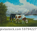 A black cow and a spotted cow in front of a lake 59794227