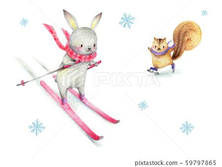 스키를 토끼 스케이트 다람쥐 59797865
