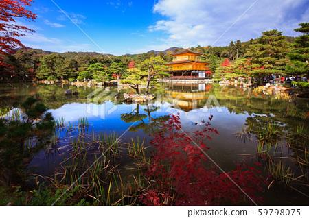 Kinkakuji Temple 59798075