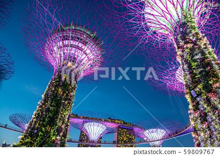 싱가포르 가든 바이 더 베이의 야경 조명 조명 59809767