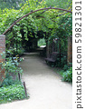 Wild grape tunnel in the city park 59821301
