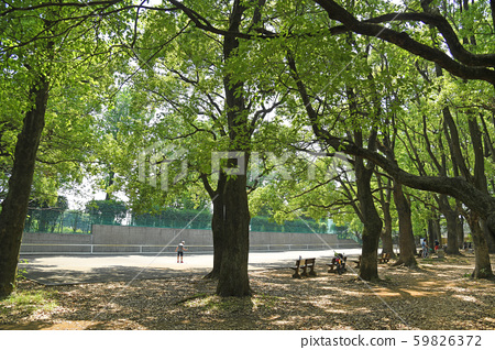 Chofu City, Koganei City Mitaka City Nogawa Park Tennis Court 59826372