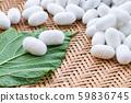 white silk cocoon 59836745
