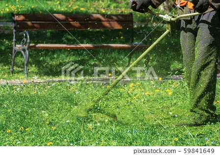 professional grass mowing in the park 59841649