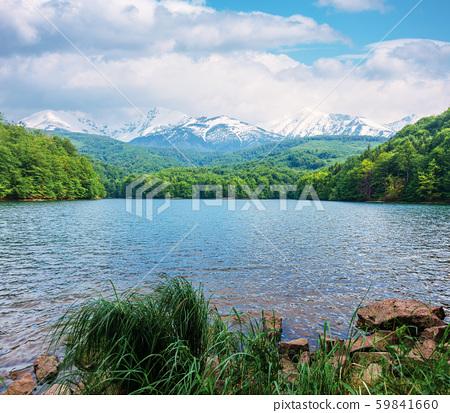 mountain lake in springtime 59841660