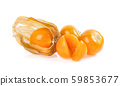 Cape Gooseberry isolated on white background 59853677