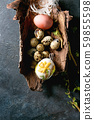 Quail Easter eggs in nest 59855598
