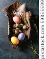 Quail Easter eggs in nest 59855599