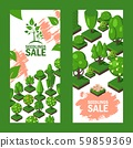 Isometric trees on vertical banners, seedlings sale advertisement flyer, vector illustration. Green 59859369
