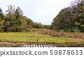 Japanese original scenery (late autumn) 59878633