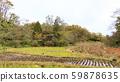 Japanese original scenery (late autumn) 59878635