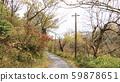Japanese original scenery (late autumn) 59878651