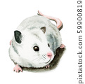 White mouse painted in watercolor 59900819
