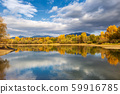 Trees in autumn colors at the shore. 59916785