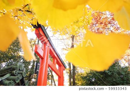 秋天的神社和廟宇自然風光 59933343