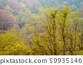 แนวหุบเขา, ฤดูใบไม้ร่วงภูเขา 59935146