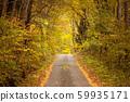 ต้นไม้ในฤดูใบไม้ร่วงเส้นทางเล็ก ๆ ในป่า 59935171