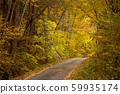 ต้นไม้ในฤดูใบไม้ร่วงเส้นทางเล็ก ๆ ในป่า 59935174