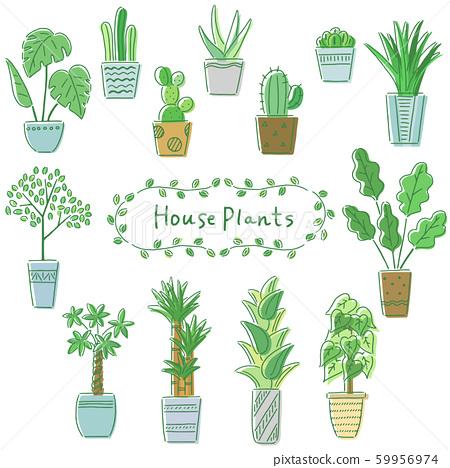 室內植物一套 59956974