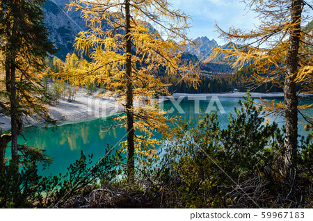 Autumn peaceful alpine lake Braies or Pragser 59967183