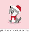 Christmas illustration with husky puppy in santas hat and with scarf. Vector. 59975794
