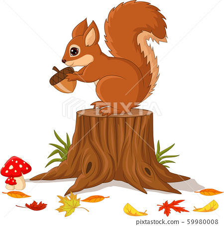 Cartoon funny squirrel holding pine cone on tree stump 59980008