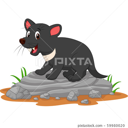 Cartoon tasmanian devil on the rock 59980020