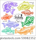 American Fish - vector set 3 for creative design, t-shirt, badge and logo. Isolated on white. 59982352