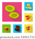 Isolated object of fruit and dried icon. Collection of fruit and food stock symbol for web. 59991733
