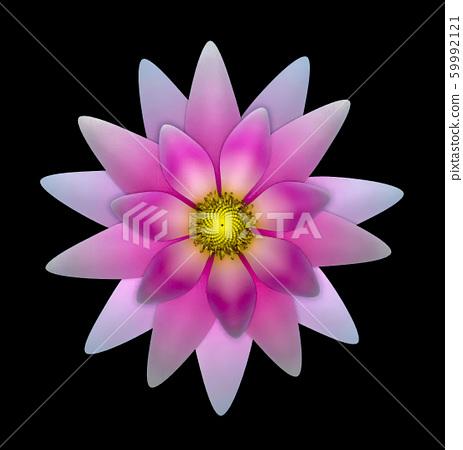 Single Pink Blooming Lotus Flower - 3D Rendering 59992121