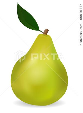 Green pear 60016117