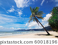 nature view of nice tropical summer beach with palms around in Patong, Phuket island, Thailand. holiday and vacation for summer season concept. beautiful tropical beach. beach with blue sky background 60018196