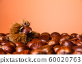 Ripe chestnuts close up. Raw Chestnuts for Christmas. Fresh sweet chestnut. Food background. Copy space 60020763