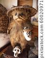 狸貓釀 60020971