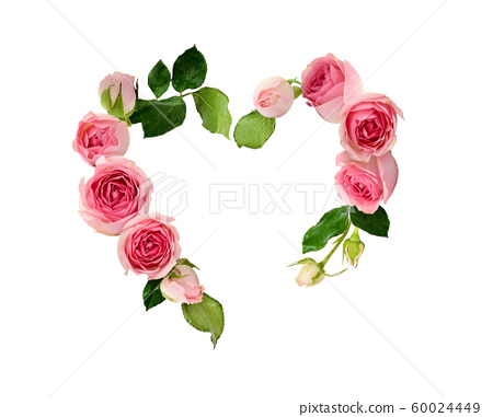 Pink rose flowers and buds in a heart shape 60024449