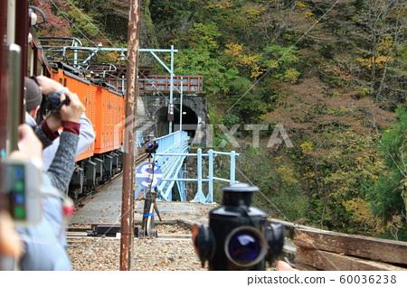 Truck train 60036238