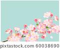 櫻花水彩插圖 60038690