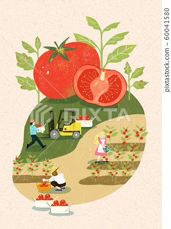 Season of harvest of fresh food materials illustration. vegetables, fruits, fishes, meat and so on. 012 60041580