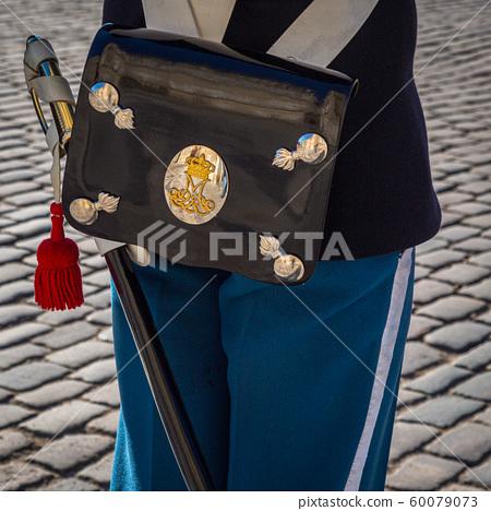 A Royal guard at Amalienborg Palace Copenhagen, 60079073