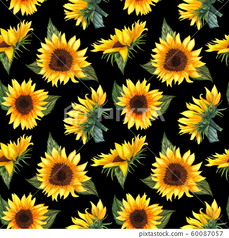 Seamless pattern with sunflowers on black background. Collection decorative floral design elements. Flowers, buds and leaf hand drawn with watercolor. 60087057